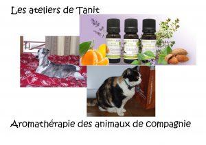 aroma_animaux
